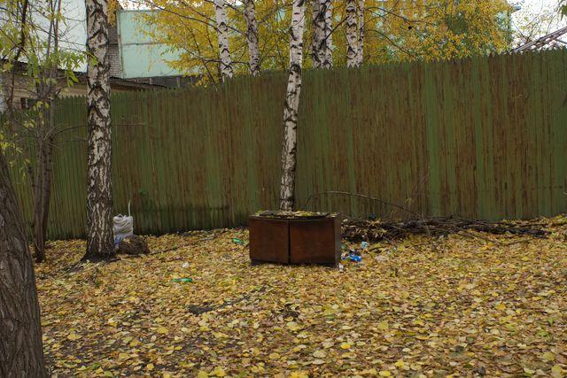 Опавшие листья, помоечный столик