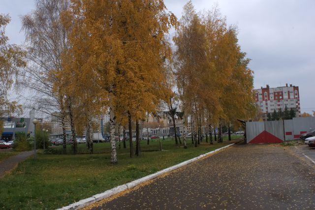 Тротуар, забор, жёлтые листья на деревьях