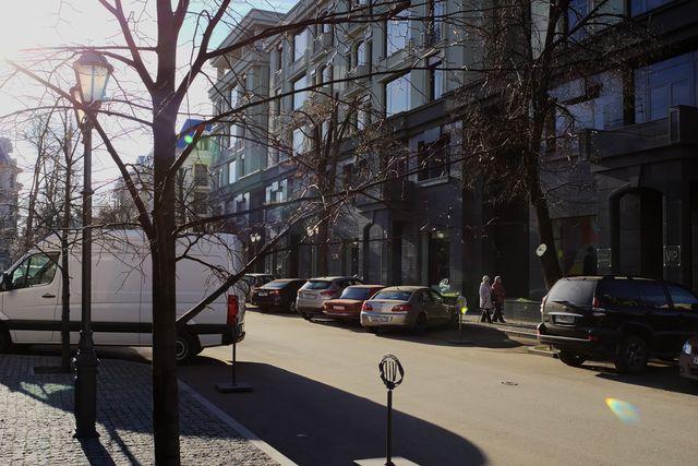Фонари, ветви деревьев, улица